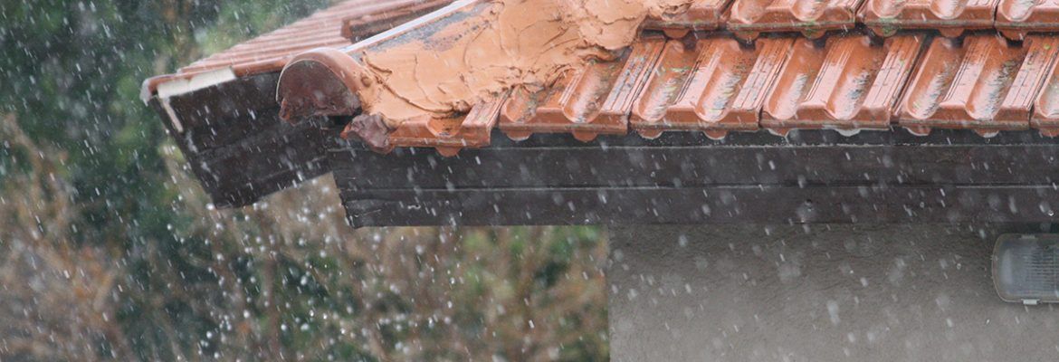 Is Your Roof at Risk? Spring Rain and Roof Leaks